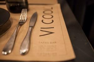 ViCool 1